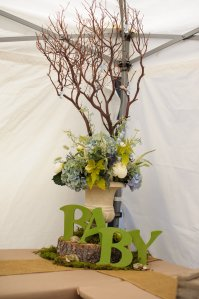 View More: http://berryessaphotography.pass.us/babyshower